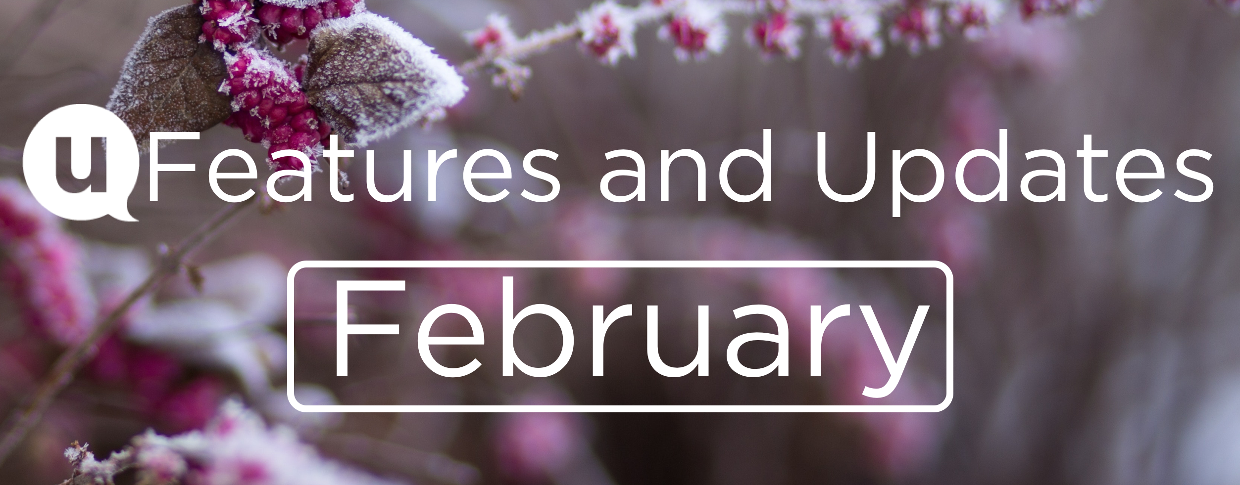 February Features and Updates Header